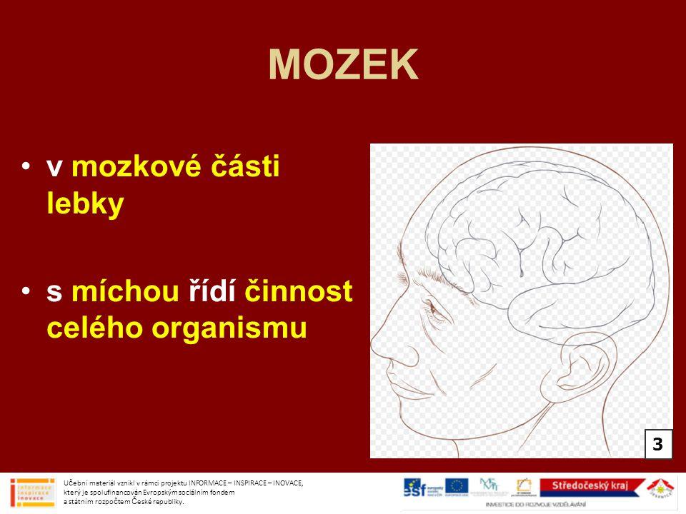 MOZEK v mozkové části lebky s míchou řídí činnost celého organismu Učební materiál vznikl v rámci projektu INFORMACE – INSPIRACE – INOVACE, který je s