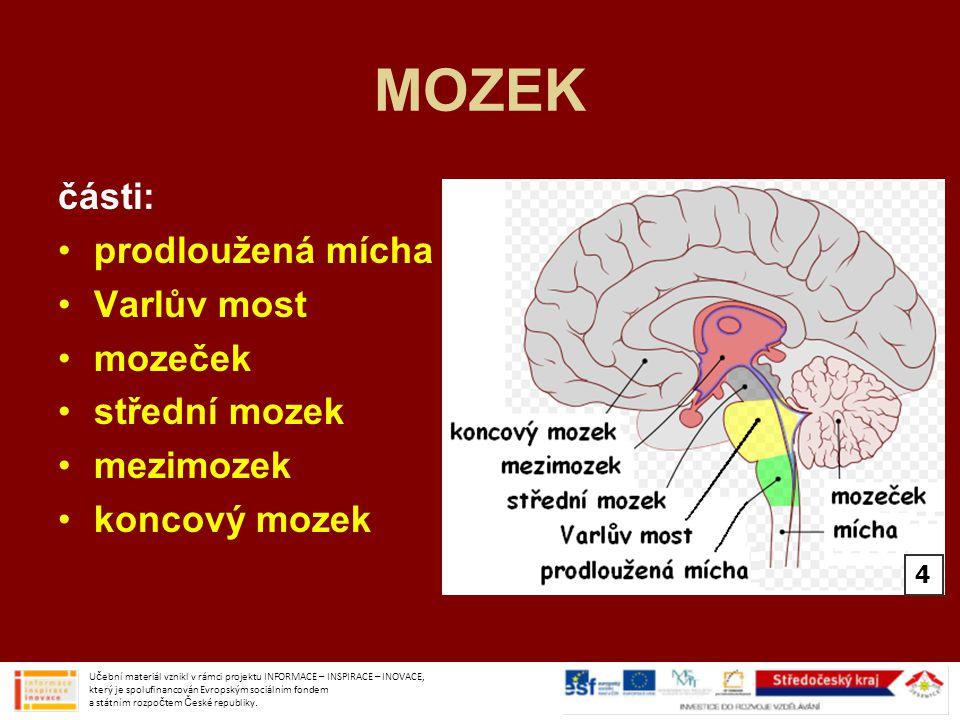 MOZEK části: prodloužená mícha Varlův most mozeček střední mozek mezimozek koncový mozek Učební materiál vznikl v rámci projektu INFORMACE – INSPIRACE – INOVACE, který je spolufinancován Evropským sociálním fondem a státním rozpočtem České republiky.