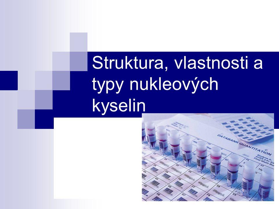 Struktura RNA primární struktura: je v podstatě stejná jako u DNA, rozdíl je jenom v složení nukleotidů, ve kterých je deoxyribosa nahrazena ribosou a z dusíkatých bází je thymin nahrazen uracilem.