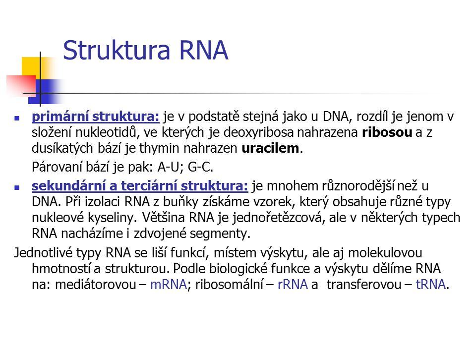 Terciární struktura DNA vzniká stočením dvojšroubovnice v prostoru do tzv. SUPERHELIXU, takto vzniklá DNA se nazývá superspiralizovaná.