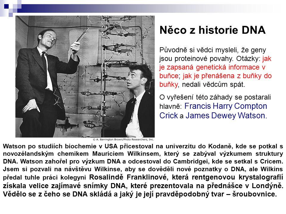 Původně si vědci mysleli, že geny jsou proteinové povahy.