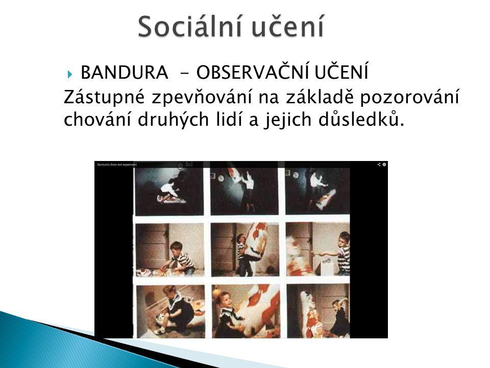  BANDURA - OBSERVAČNÍ UČENÍ Zástupné zpevňování na základě pozorování chování druhých lidí a jejich důsledků.