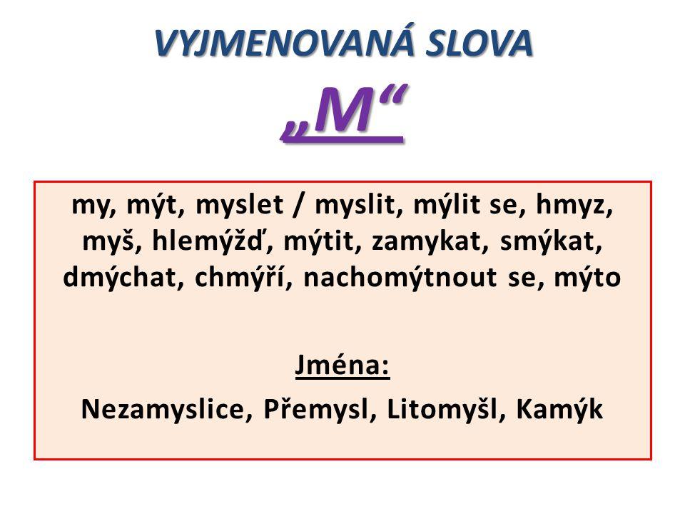 """VYJMENOVANÁ SLOVA """"M"""" my, mýt, myslet / myslit, mýlit se, hmyz, myš, hlemýžď, mýtit, zamykat, smýkat, dmýchat, chmýří, nachomýtnout se, mýto Jména: Ne"""