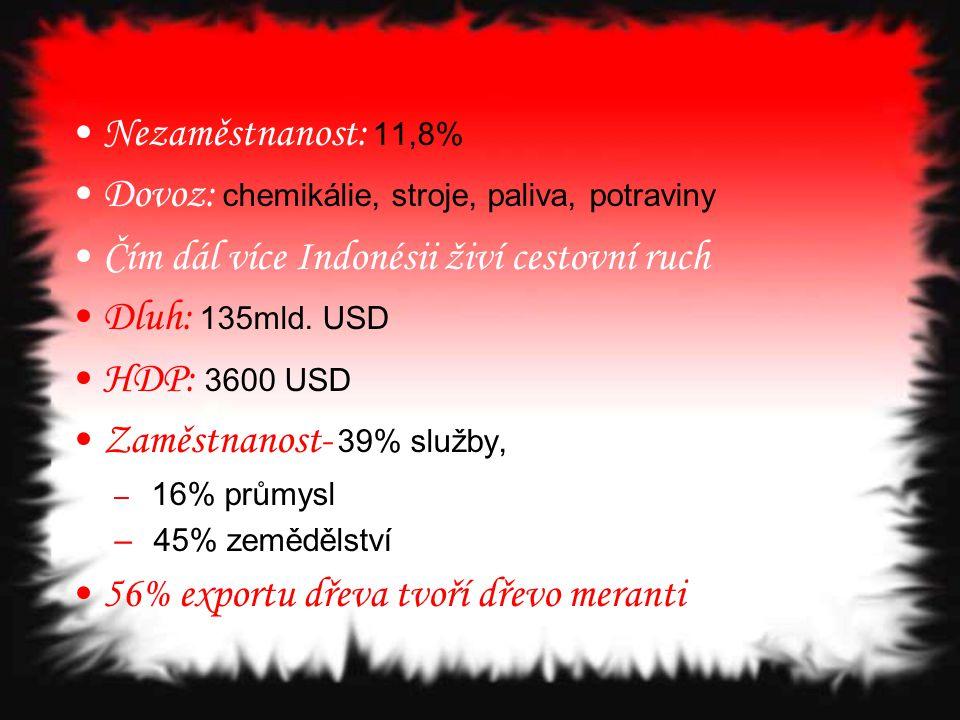 Nezaměstnanost: 11,8% Dovoz: chemikálie, stroje, paliva, potraviny Čím dál více Indonésii živí cestovní ruch Dluh: 135mld. USD HDP: 3600 USD Zaměstnan