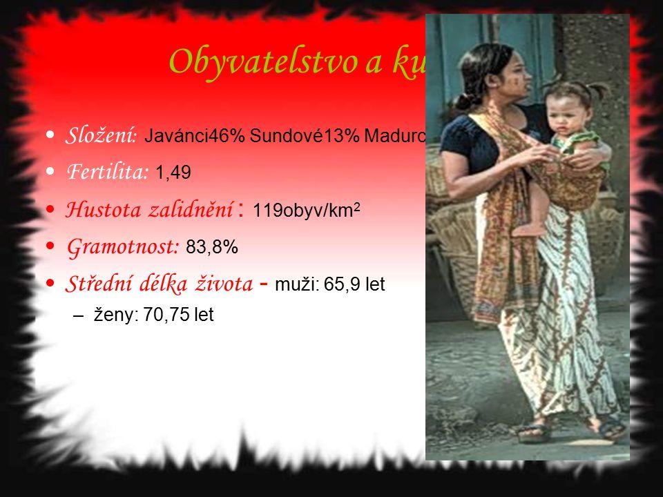 Obyvatelstvo a kultura Složení : Javánci46% Sundové13% Madurci 6% Fertilita: 1,49 Hustota zalidnění : 119obyv/km 2 Gramotnost: 83,8% Střední délka živ