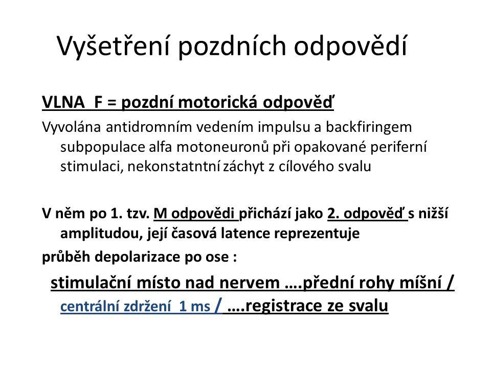 Vyšetření pozdních odpovědí VLNA F = pozdní motorická odpověď Vyvolána antidromním vedením impulsu a backfiringem subpopulace alfa motoneuronů při opa