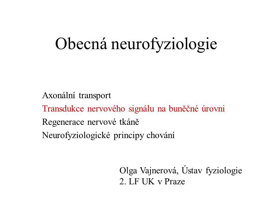 Obecná neurofyziologie Axonální transport Transdukce nervového signálu na buněčné úrovni Regenerace nervové tkáně Neurofyziologické principy chování Olga Vajnerová, Ústav fyziologie 2.
