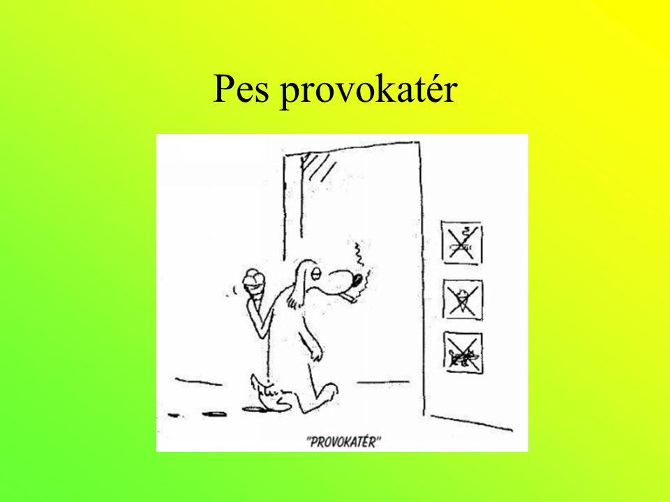 Pes provokatér