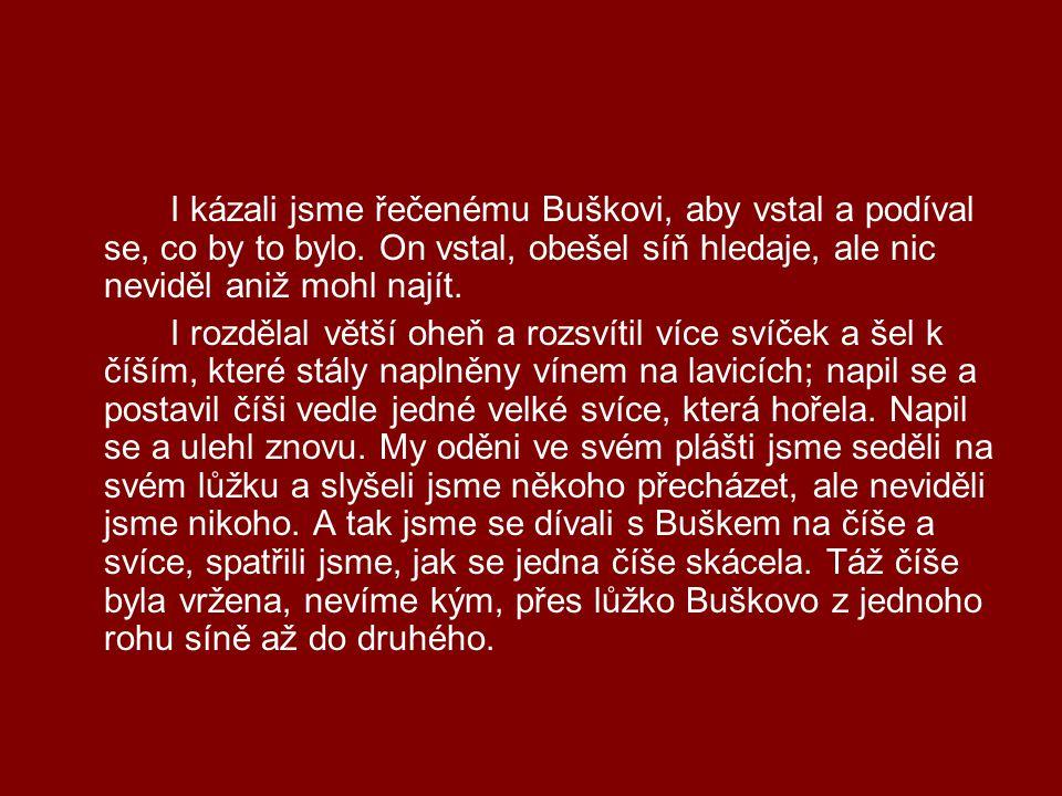 I kázali jsme řečenému Buškovi, aby vstal a podíval se, co by to bylo. On vstal, obešel síň hledaje, ale nic neviděl aniž mohl najít. I rozdělal větší