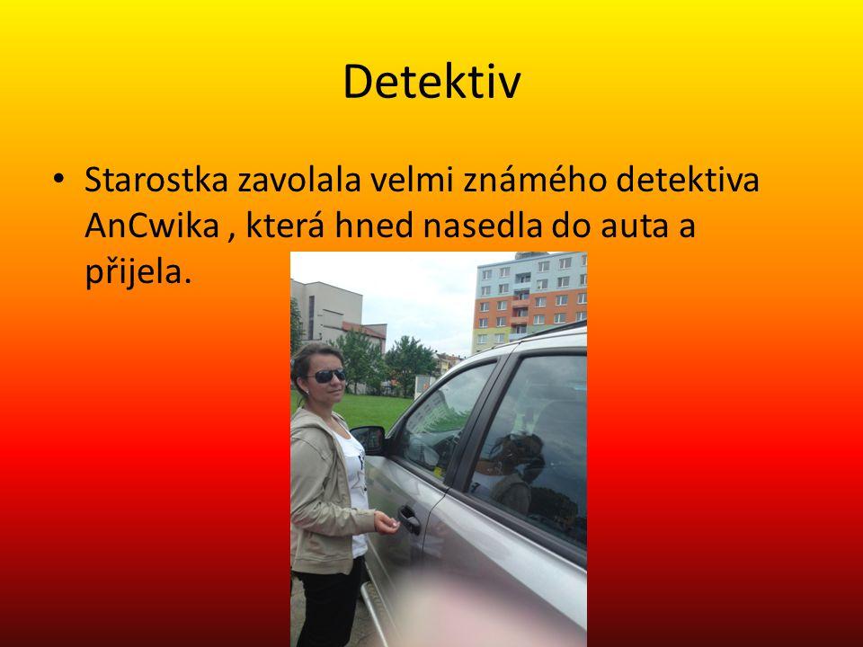 Detektiv Starostka zavolala velmi známého detektiva AnCwika, která hned nasedla do auta a přijela.