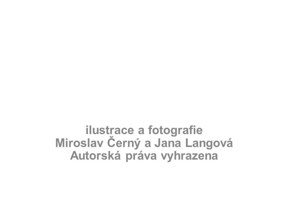 ilustrace a fotografie Miroslav Černý a Jana Langová Autorská práva vyhrazena