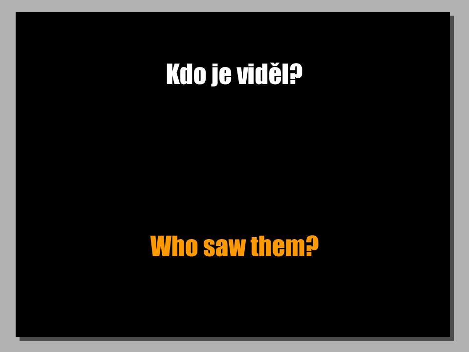 Kdo je viděl? Who saw them?