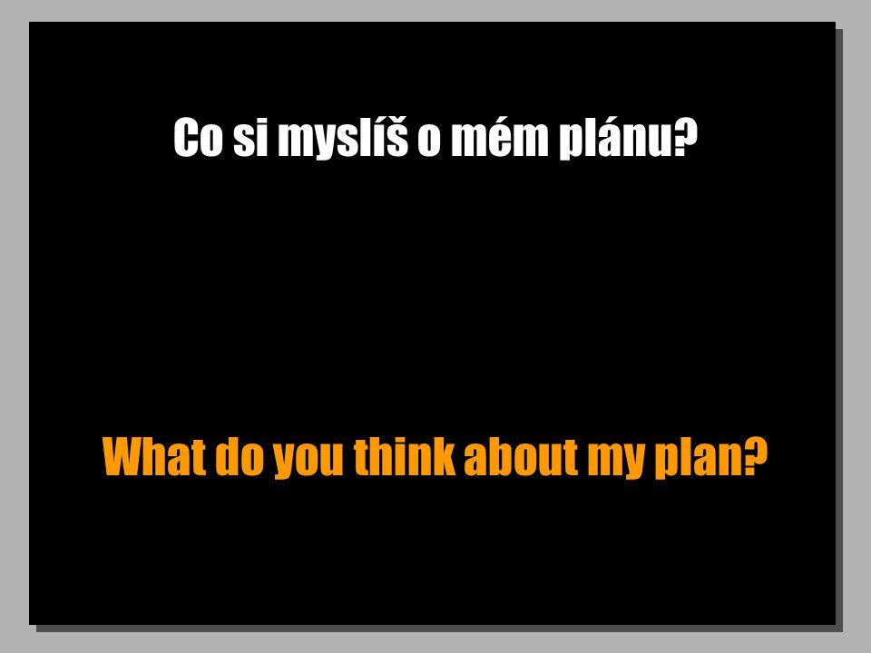 Co si myslíš o mém plánu? What do you think about my plan?
