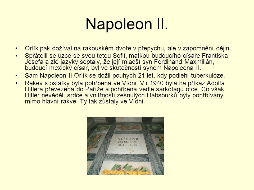 Napoleon II. Orlík pak dožíval na rakouském dvoře v přepychu, ale v zapomnění dějin. Spřátelil se úzce se svou tetou Sofií, matkou budoucího císaře Fr