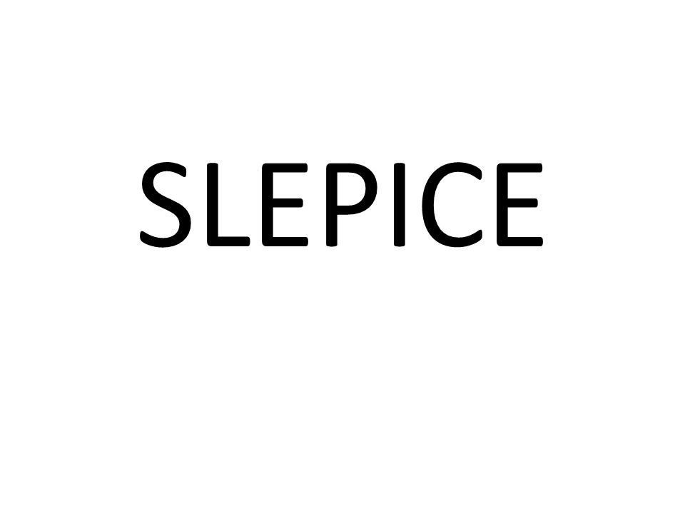 SLEPICE