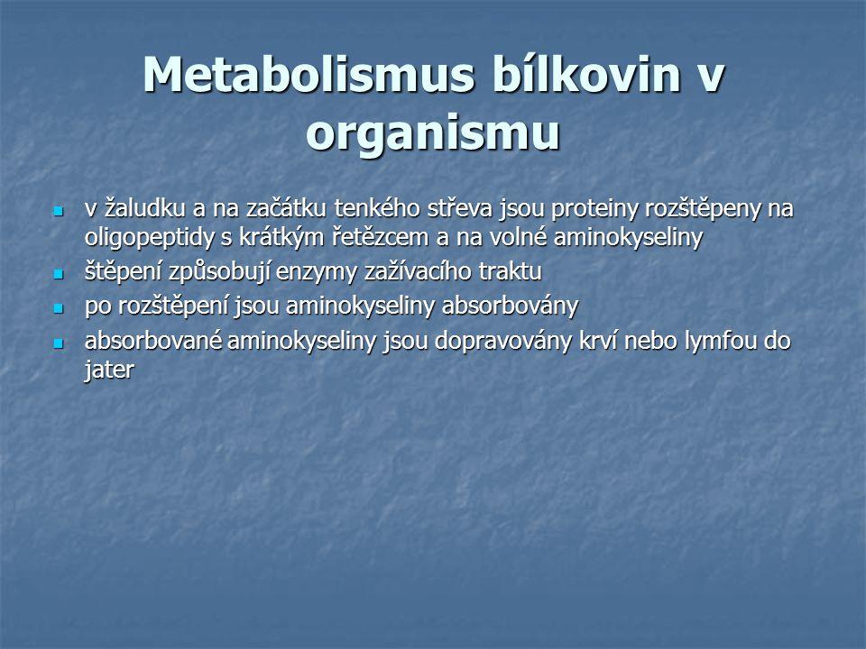 Využití aminokyselin v játrech syntéza bílkovin syntéza bílkovin desaminace - čpavek se vyloučí jako močovina močí, bezdusíkatá frakce se oxiduje anebo se z ní tvoří cukry desaminace - čpavek se vyloučí jako močovina močí, bezdusíkatá frakce se oxiduje anebo se z ní tvoří cukry aminokyseliny se krví dopraví do svalů a tam dojde k syntéze bílkovin, odštěpení čpavku a bezdusíkatá frakce se oxiduje aminokyseliny se krví dopraví do svalů a tam dojde k syntéze bílkovin, odštěpení čpavku a bezdusíkatá frakce se oxiduje
