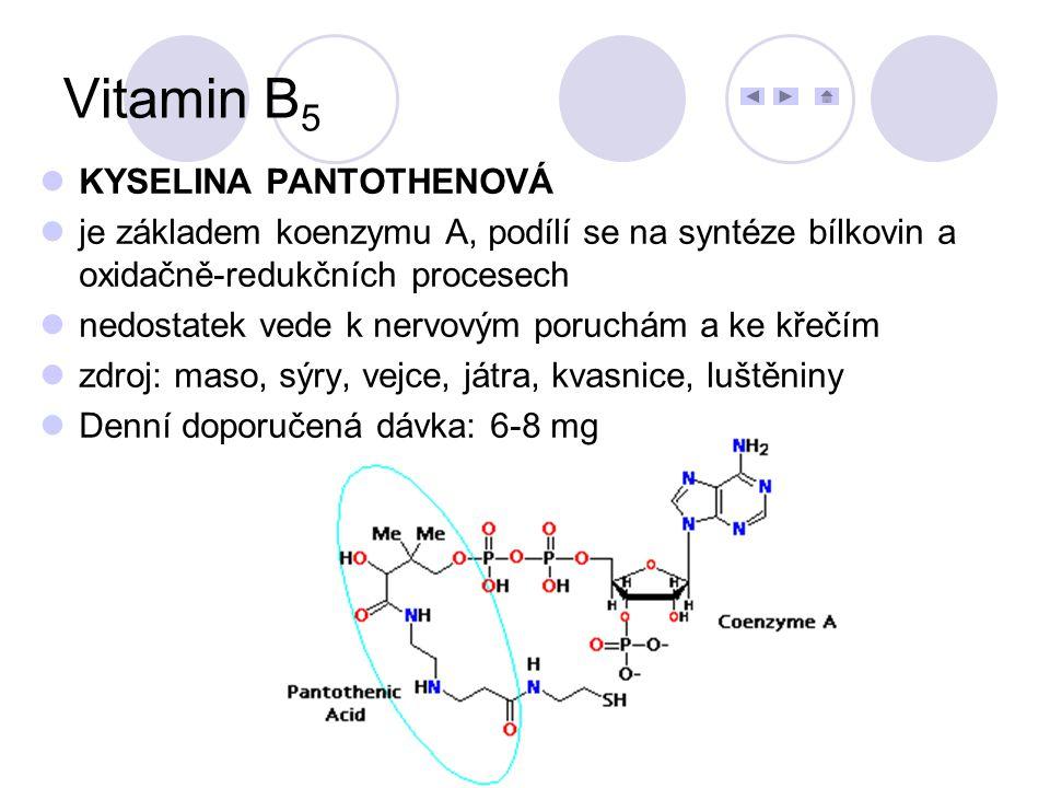 KYSELINA PANTOTHENOVÁ je základem koenzymu A, podílí se na syntéze bílkovin a oxidačně-redukčních procesech nedostatek vede k nervovým poruchám a ke k
