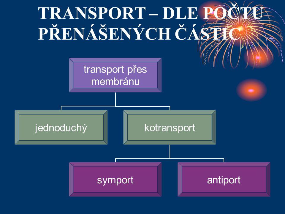 TRANSPORT – DLE POČTU PŘENÁŠENÝCH ČÁSTIC transport přes membránu jednoduchýkotransport symportantiport