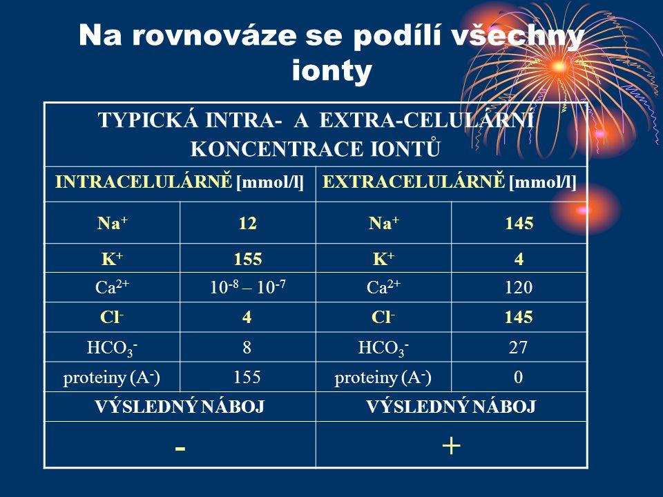 Na rovnováze se podílí všechny ionty TYPICKÁ INTRA- A EXTRA-CELULÁRNÍ KONCENTRACE IONTŮ INTRACELULÁRNĚ [mmol/l]EXTRACELULÁRNĚ [mmol/l] Na + 12Na + 145