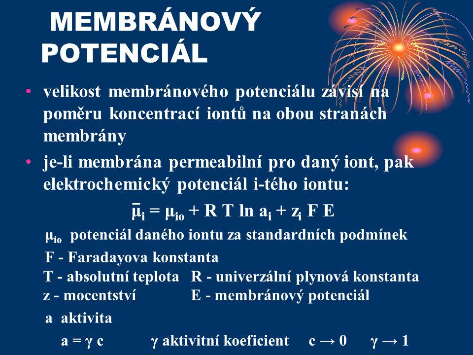 MEMBRÁNOVÝ POTENCIÁL velikost membránového potenciálu závisí na poměru koncentrací iontů na obou stranách membrány je-li membrána permeabilní pro daný