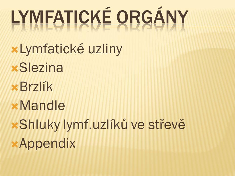  Lymfatické uzliny  Slezina  Brzlík  Mandle  Shluky lymf.uzlíků ve střevě  Appendix
