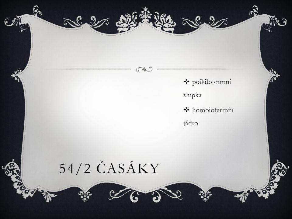 54/2 ČASÁKY  poikilotermní slupka  homoiotermní jádro