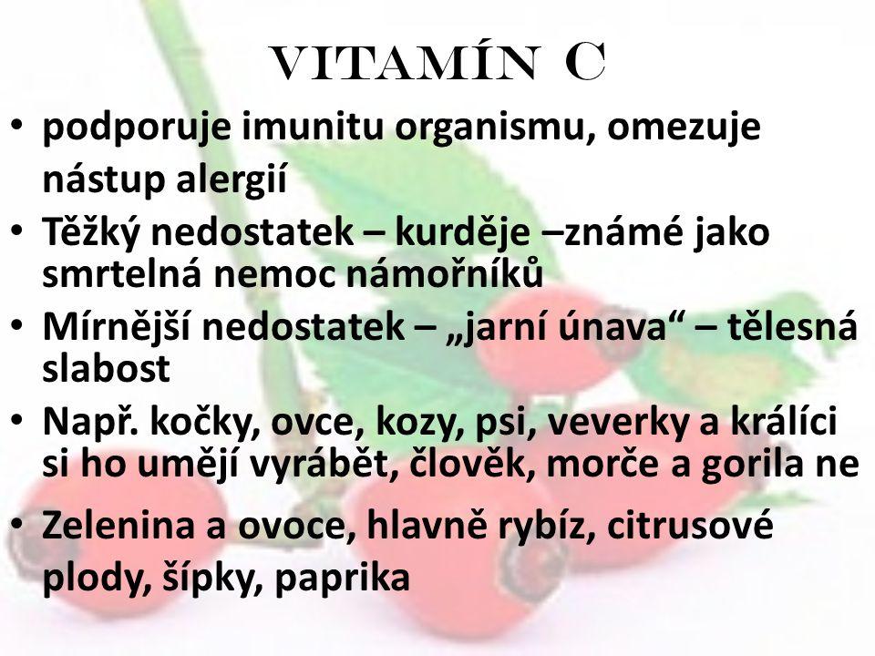"""Vitamín C podporuje imunitu organismu, omezuje nástup alergií Těžký nedostatek – kurděje –známé jako smrtelná nemoc námořníků Mírnější nedostatek – """"j"""