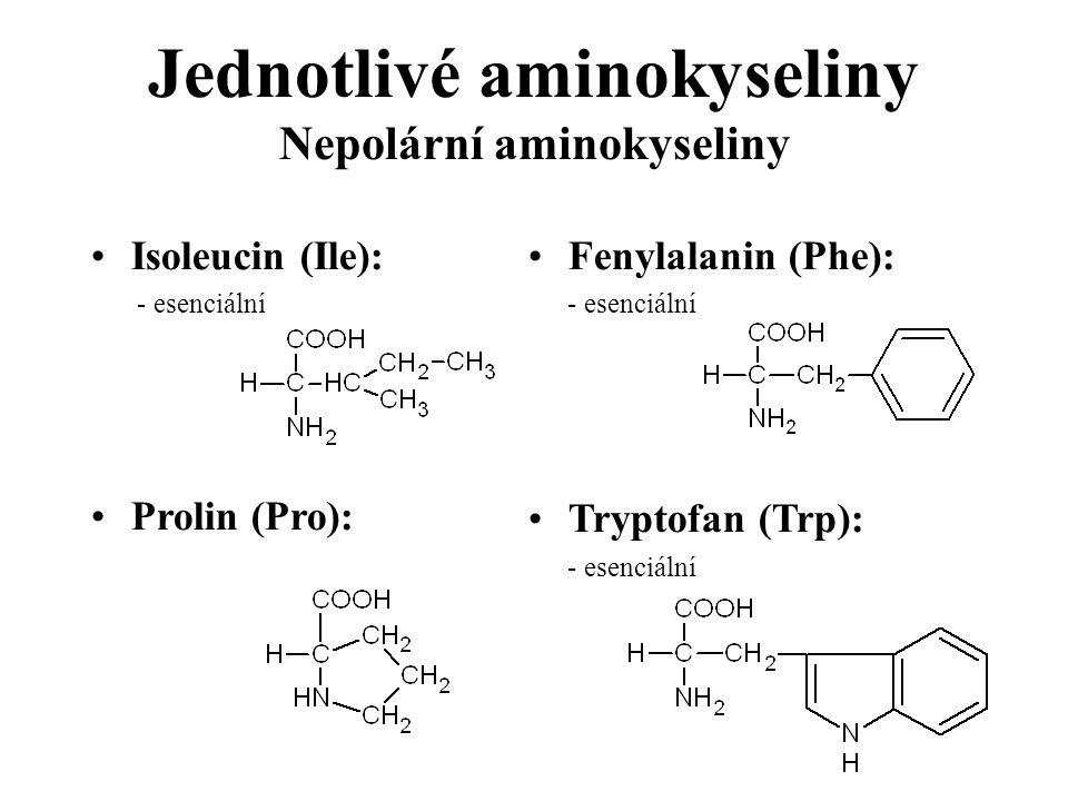 Isoleucin (Ile): - esenciální Prolin (Pro): Fenylalanin (Phe): - esenciální Tryptofan (Trp): - esenciální