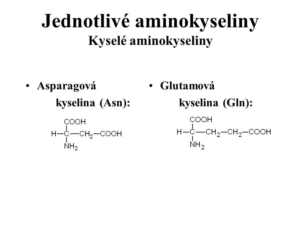 Jednotlivé aminokyseliny Kyselé aminokyseliny Asparagová kyselina (Asn): Glutamová kyselina (Gln):