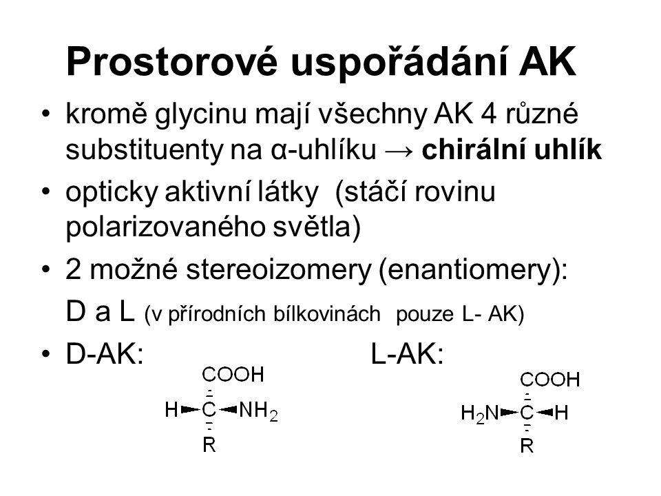 Prostorové uspořádání AK kromě glycinu mají všechny AK 4 různé substituenty na α-uhlíku → chirální uhlík opticky aktivní látky (stáčí rovinu polarizov