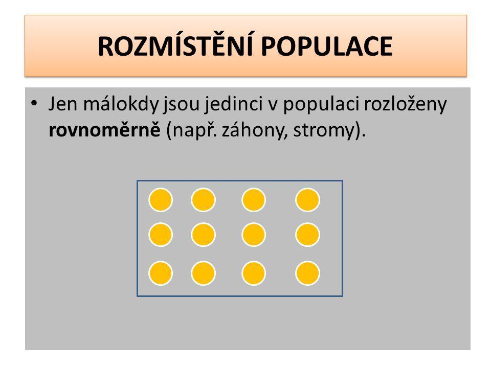 ROZMÍSTĚNÍ POPULACE Jen málokdy jsou jedinci v populaci rozloženy rovnoměrně (např.