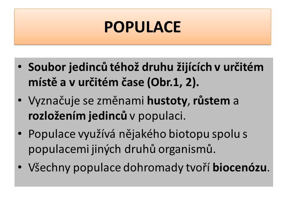 POPULACE Soubor jedinců téhož druhu žijících v určitém místě a v určitém čase (Obr.1, 2).