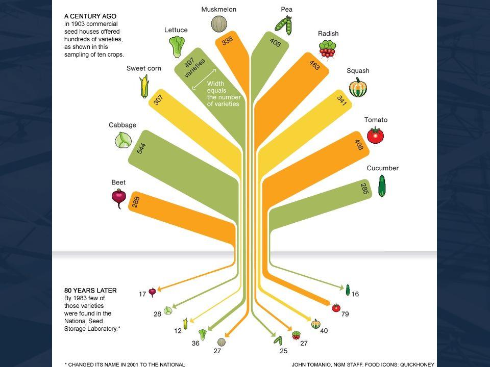 Menší výživová hodnota Nutné zvyšovat množství Klesá rozmanitost zhoršuje se odolnost vůči škůdcům