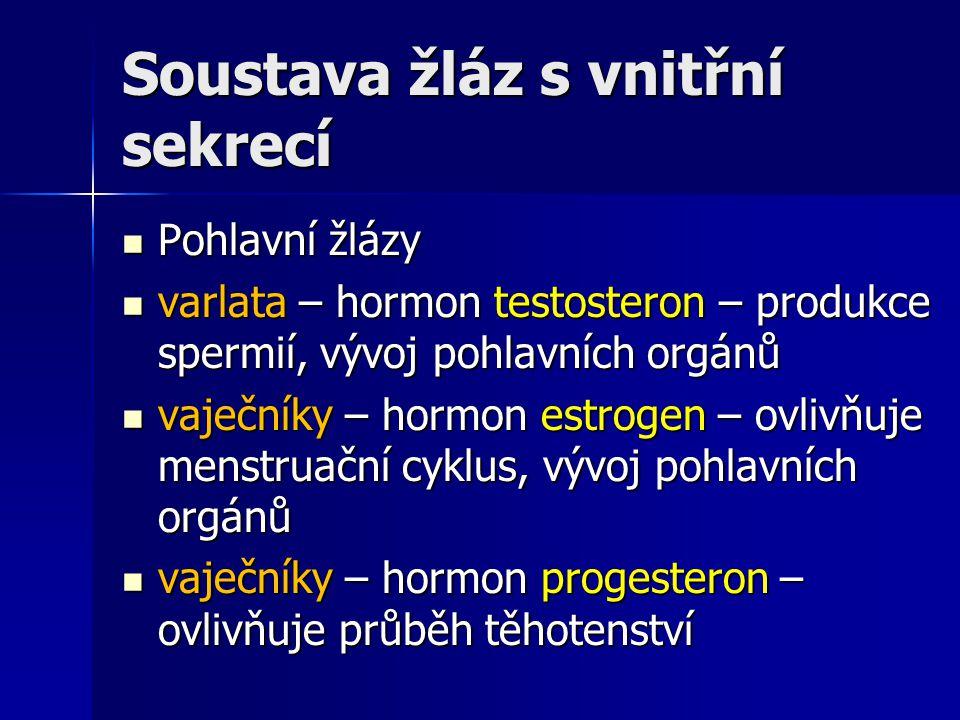 Soustava žláz s vnitřní sekrecí Pohlavní žlázy Pohlavní žlázy varlata – hormon testosteron – produkce spermií, vývoj pohlavních orgánů varlata – hormo