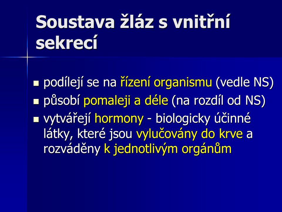 Soustava žláz s vnitřní sekrecí podílejí se na řízení organismu (vedle NS) podílejí se na řízení organismu (vedle NS) působí pomaleji a déle (na rozdí