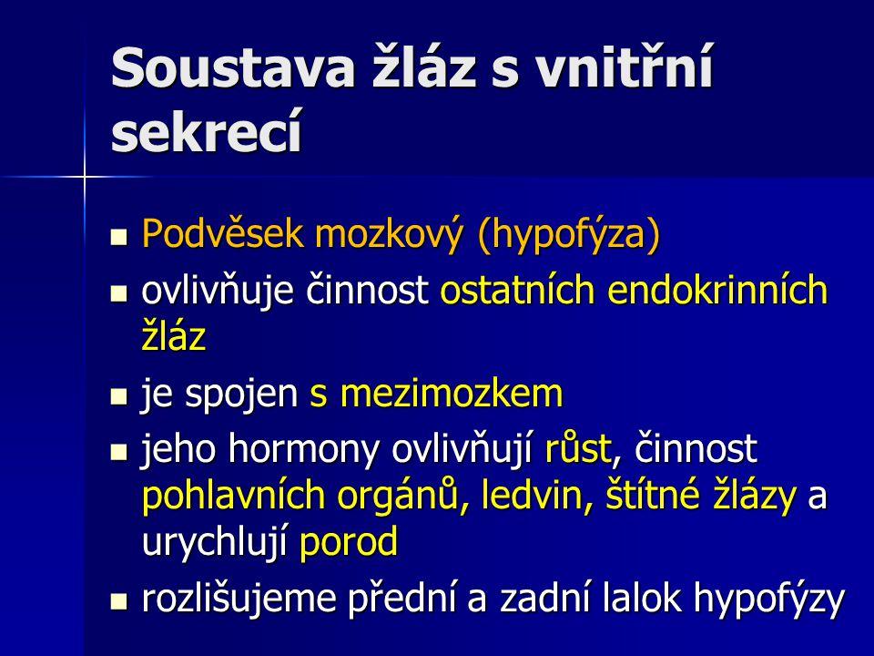 Soustava žláz s vnitřní sekrecí Hormony podvěsku mozkového (hypofýzy) Hormony podvěsku mozkového (hypofýzy) přední lalok hypofýzy – somatotropin = růstový hormon přední lalok hypofýzy – somatotropin = růstový hormon zadní lalok hypofýzy – antidiuretický hormon - zpětné vstřebávání H 2 O z ledvinových kanálků do krve zadní lalok hypofýzy – antidiuretický hormon - zpětné vstřebávání H 2 O z ledvinových kanálků do krve zadní lalok hypofýzy - oxytocin – stahy hladké svaloviny dělohy při porodu zadní lalok hypofýzy - oxytocin – stahy hladké svaloviny dělohy při porodu