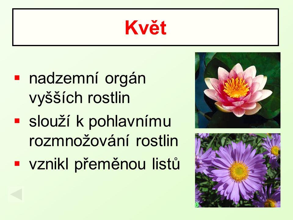  nadzemní orgán vyšších rostlin  slouží k pohlavnímu rozmnožování rostlin  vznikl přeměnou listů Květ