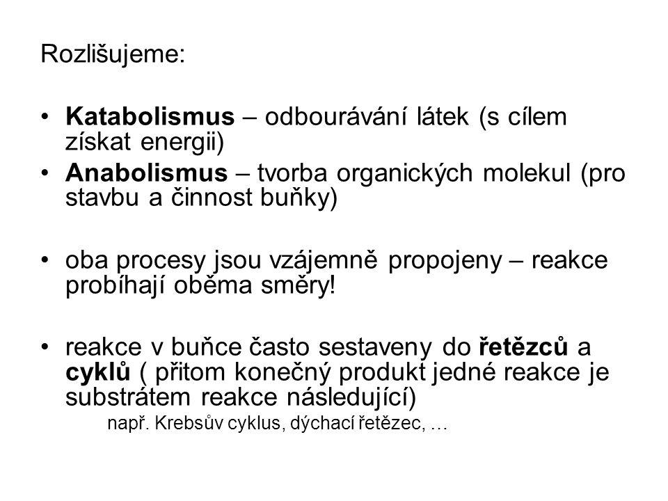 Rozlišujeme: Katabolismus – odbourávání látek (s cílem získat energii) Anabolismus – tvorba organických molekul (pro stavbu a činnost buňky) oba procesy jsou vzájemně propojeny – reakce probíhají oběma směry.