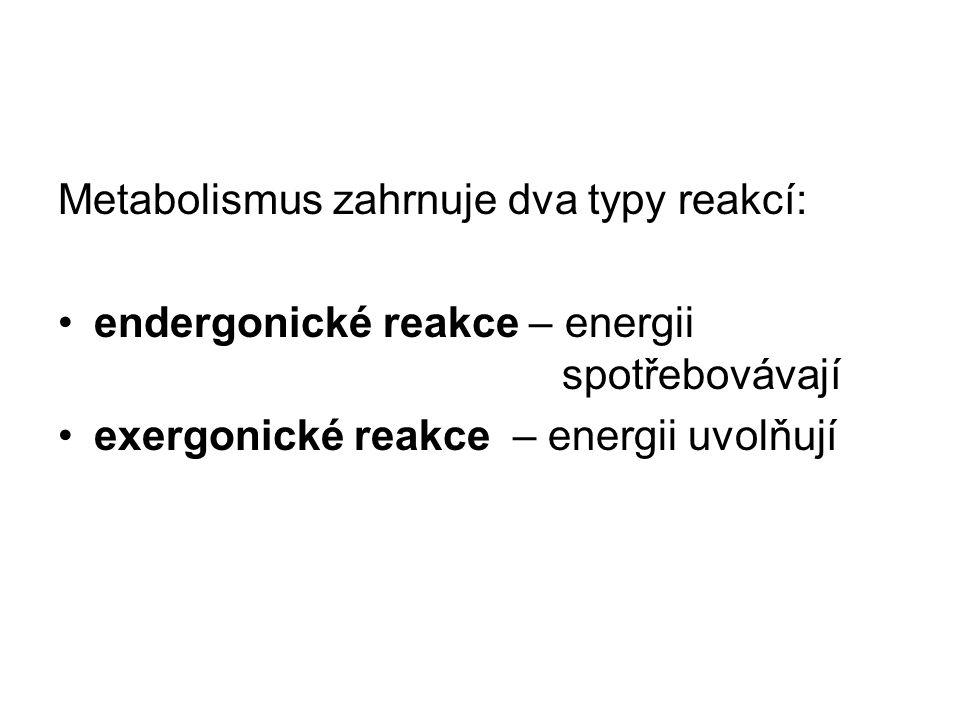 Metabolismus zahrnuje dva typy reakcí: endergonické reakce – energii spotřebovávají exergonické reakce – energii uvolňují