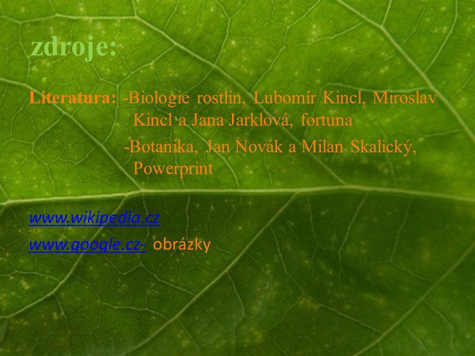 © Letohradské soukromé gymnázium o.p.s. zdroje: Literatura: -Biologie rostlin, Lubomír Kincl, Miroslav Kincl a Jana Jarklová, fortuna -Botanika, Jan N