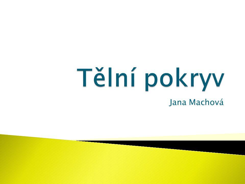 Jana Machová