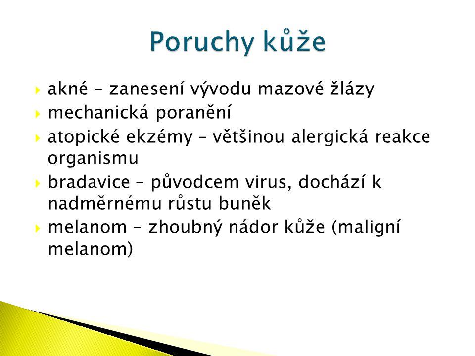  akné – zanesení vývodu mazové žlázy  mechanická poranění  atopické ekzémy – většinou alergická reakce organismu  bradavice – původcem virus, doch