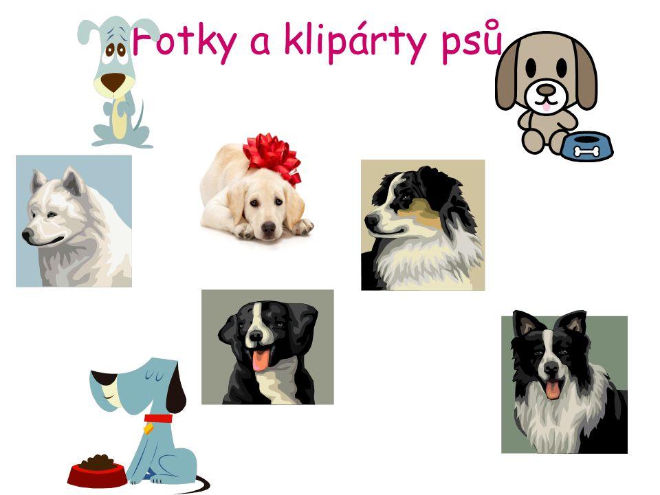 Fotky a klipárty psů