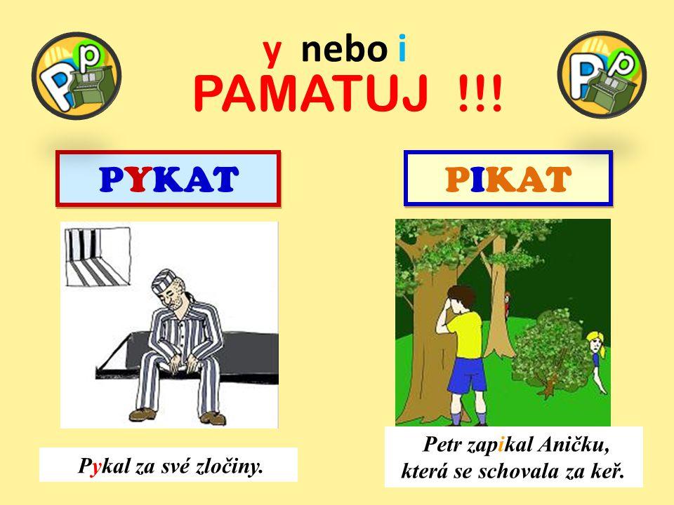 PAMATUJ !!! PYKAT PIKAT y nebo i Petr zapikal Aničku, která se schovala za keř. Pykal za své zločiny.