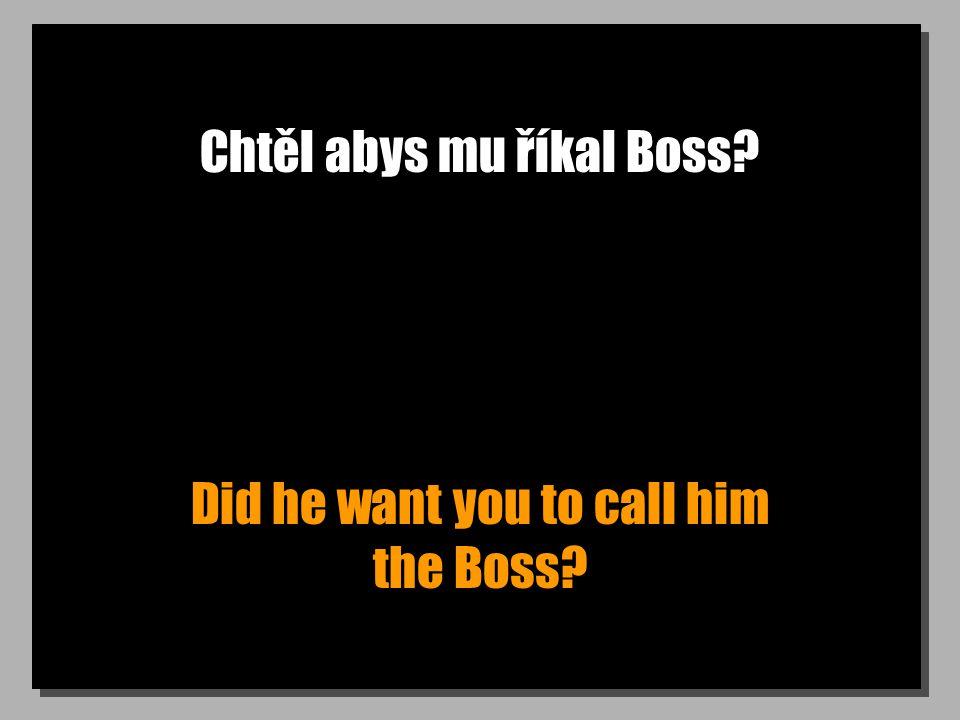 Chtěl abys mu říkal Boss? Did he want you to call him the Boss?