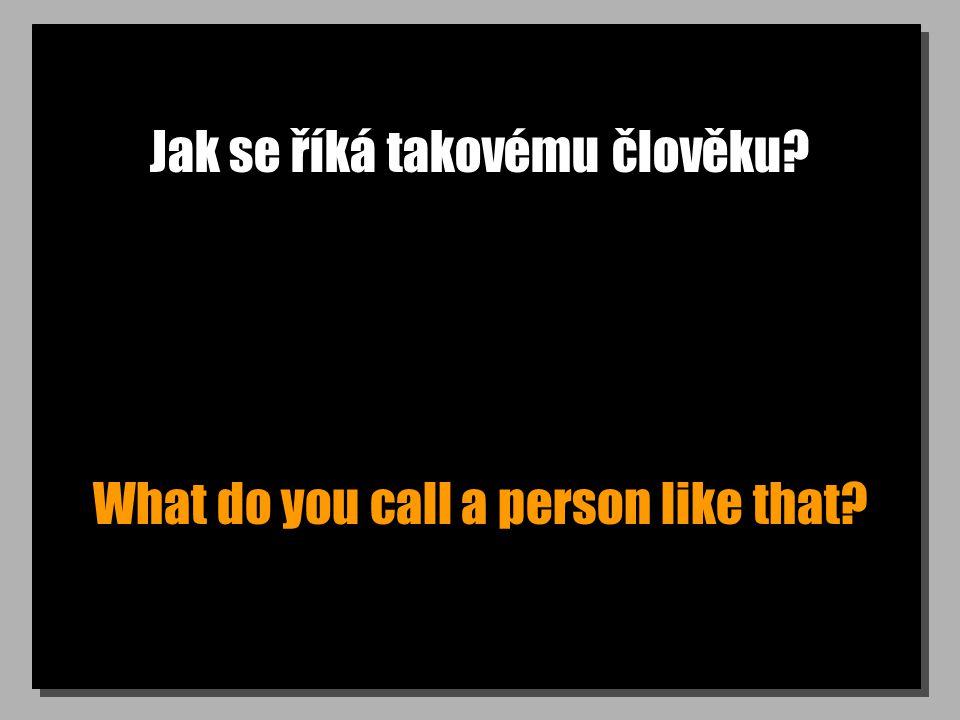 Jak se říká takovému člověku? What do you call a person like that?