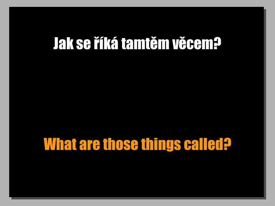 Jak se říká tamtěm věcem? What are those things called?