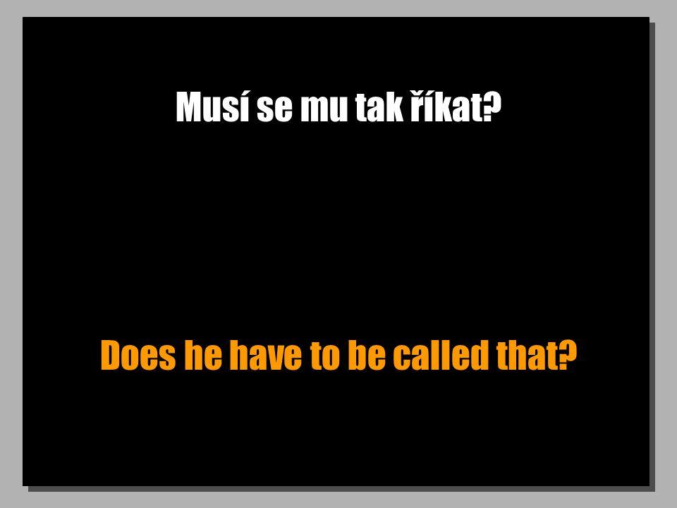 Jak mu říkají kamarádi? What do his friends call him?