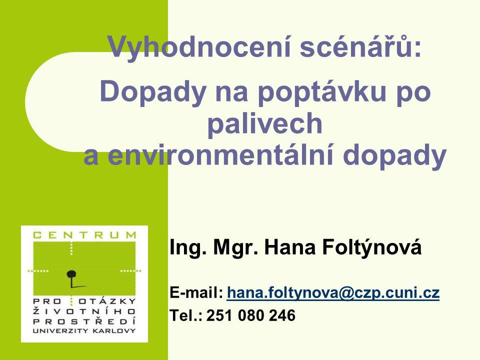 Tvorba modelu – vybraná paliva Krátké období – Plošné přimíchávání (ethanol do benzínu, MEŘO do nafty) – Náhrada benzínu Bioethanol (z pšenice, cukrové řepy, bioodpadu) Čisté rostlinné oleje (od 2007) – Náhrada nafty Methylestery (z řepky, bioodpadu) Čisté rostlinné oleje (od 2007) - Rozvoj LPG, CNG Dlouhé období – Nástup LNG (od 2011) – Náhrada benzínu i nafty Ethanol z lignocelulózy (od 2011) Fischer-Tropsch nafta (od 2011) Vodík z obnovitelných zdrojů (od 2015)