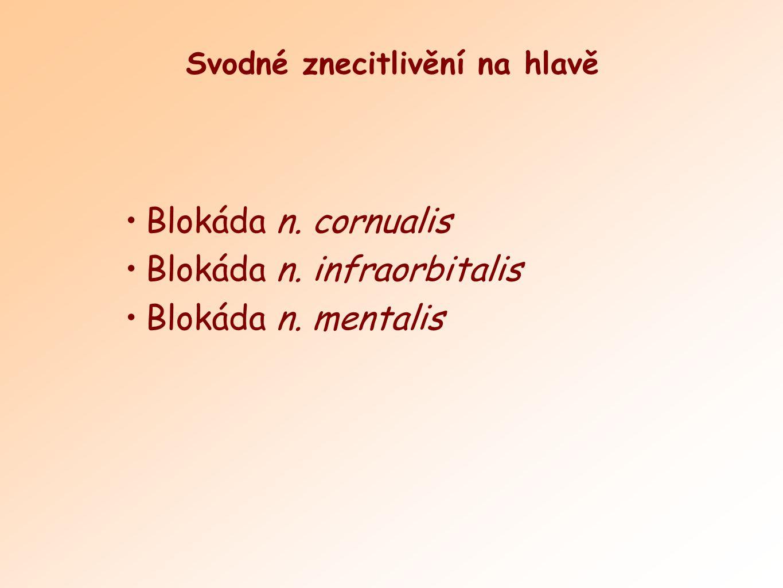 Blokáda n. cornualis Blokáda n. infraorbitalis Blokáda n. mentalis Svodné znecitlivění na hlavě